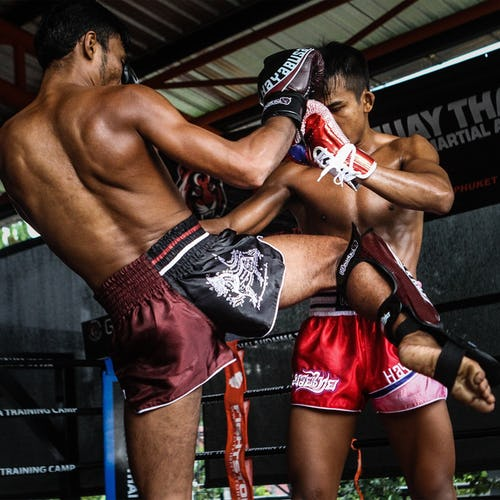 Pro Muay Thai Lace Gloves